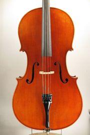 Meister Cello von Franz Reindl