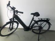 Herren E-Bike Kalkhoff Image 5