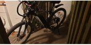 1 x FISCHER FAHRRAEDER E-Bike