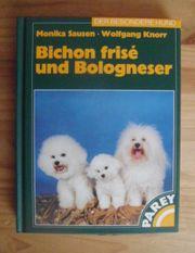 Bichon Frise Bologneser Buch