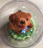 Teddybär von Bären Marke