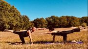 Paar Yoga für Paare in