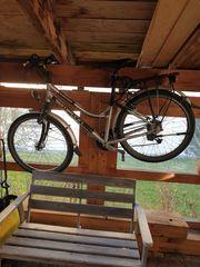 Fahrrad Simplon Kagu