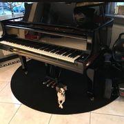 Suche Klavier oder Flügel -