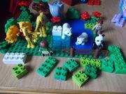 Lego Duplo Set Zoo
