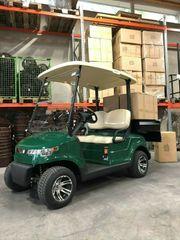 HANSECART Modell Duty Golfcart Elektrofahrzeug