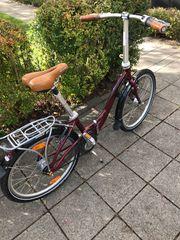 Damen Fahrrad Faltrad oder Herren