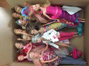Barbie Kiste mit Zubehör