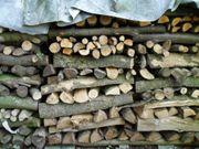 Brennholz Erle 60 Eur Ster