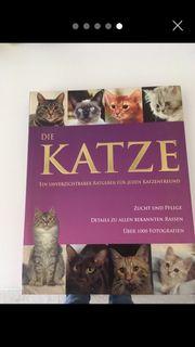 5 Katzenbücher