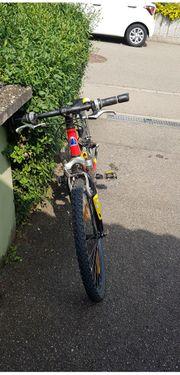 Mountainbike 24 Zoll Fuji