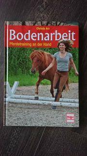 Bodenarbeit Pferdetraining an der Hand -