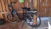 E-Bike Damen Herren