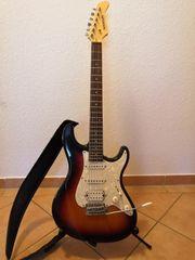 Gitarren Verstärker Effekt Pedale Harley