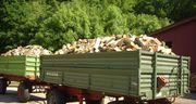 1A Brennholz - zu konkurrenzlos günstigen