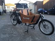 Elektr Bike Allergo Cargo