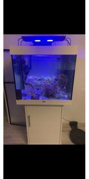 Meerwasseraquarium von Juwel mit Unterschrank