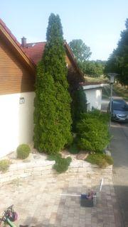 Tolles Einfamilienhaus in Sinsheim-Rohrbach zu