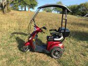 E - Trike Didi Thurau Limited