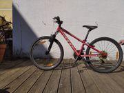 Felt Bike Q-Series 24 rot