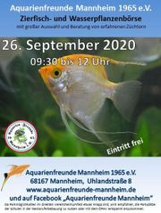 Fischbörse bei den Aquarienfreunden Mannheim