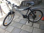 ARCADIA ALU-Streetrider Jugendfahrrad blau Mountainbike