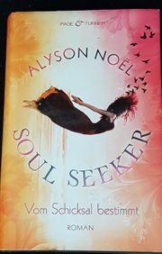 Soul Seeker Jugendbuch