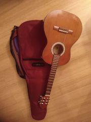Gitarre 3 4 Pro Natura