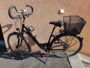 Gudereit LC30 Damenfahrrad Citybike tiefer