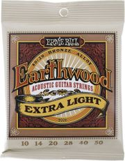 2x Ernie Ball Earthwood-Gitarrensaiten