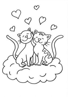 Vereine, Gruppen, Initiativen - Pflegestellen für Katzen gesucht