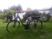 E-Bike Bergamont Herren