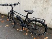 E-Bike Macina Sport Plus - NEUWERTIG