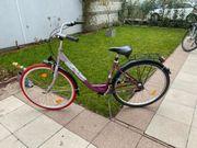 Damen Fahrrad der Marke Mackenzie