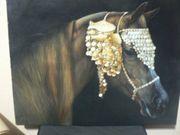 Araber Pferd Traumhaftes Gemälde Reitsport