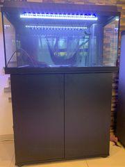 Juwel Aquarium 110 Liter mit