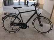 Premium Alu-Fahrrad Cityrad Torpedo Platinium