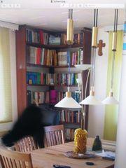 Paschen Bücherregal