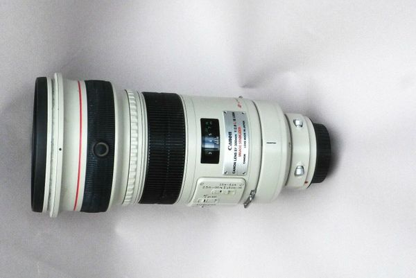 Canon EF 300 mm f 2, 8 IS USM