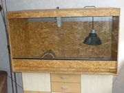 Terrarium mit UV Lampe und