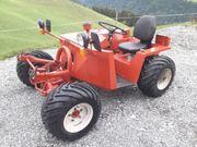 Aebi Metrac TT33