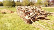 gemischtes Hartholz zu verkaufen