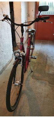 Damen Herren Fahrrad 28 Zol