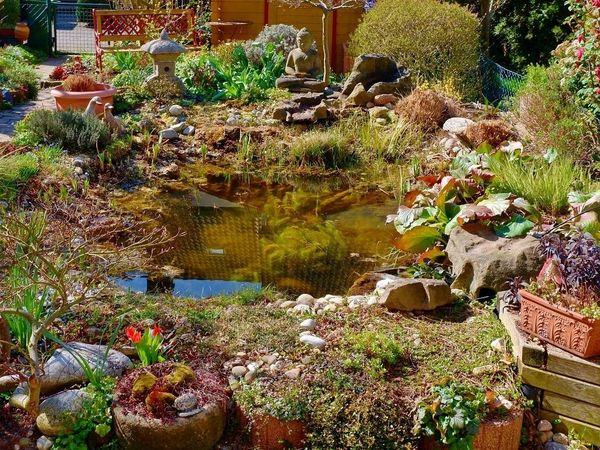 Zubehör für Gartenteichanlage abzugeben