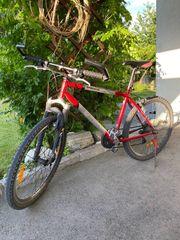 Mountainbike Shimano LX Bestückung