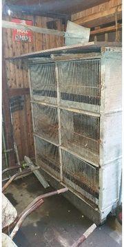 hasenkasten Kaninchen Stall