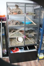 Käfig für Nager oder Vögel