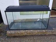 Verkaufe Aquarium Terrarium für Hamster