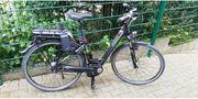 E-Bike Pegasus Modell Premio E8F