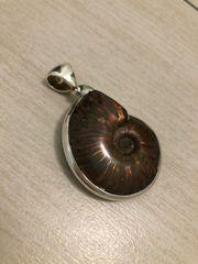 Ammonit Kettenanhänger Silber